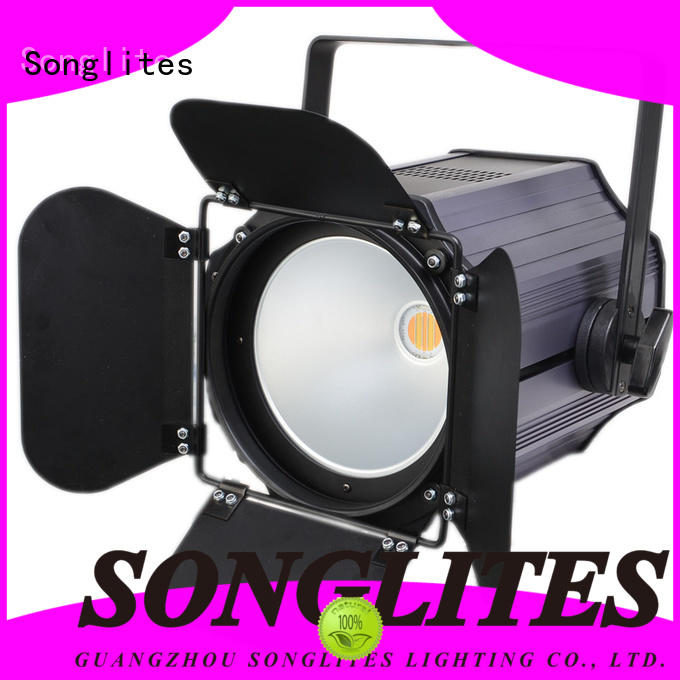 1pcs 200w White/Warm White/4in1/5in1 Indoor cob led par can SL-3046